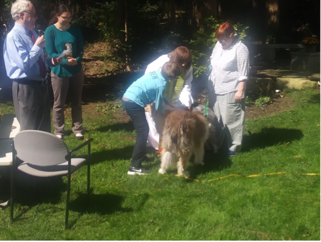 Union Church Biddeford Pool, ME Blessing of the Animals